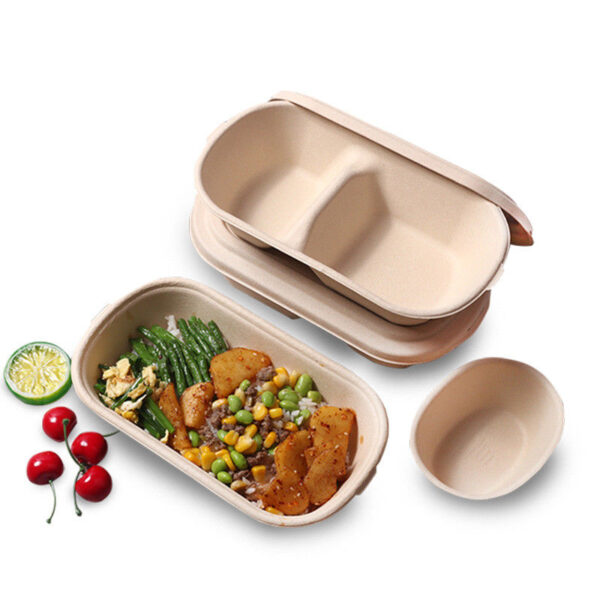 Disposable-Pulp-Food-Containers-Take-Away-Lunch-Box-Sugarcane-Bagasse--Biodegradable-fondokia-