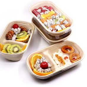 Disposable-Pulp-Food-Containers-Take-Away-Lunch-Box-Sugarcane-Bagasse-Biodegradable-fondokia-